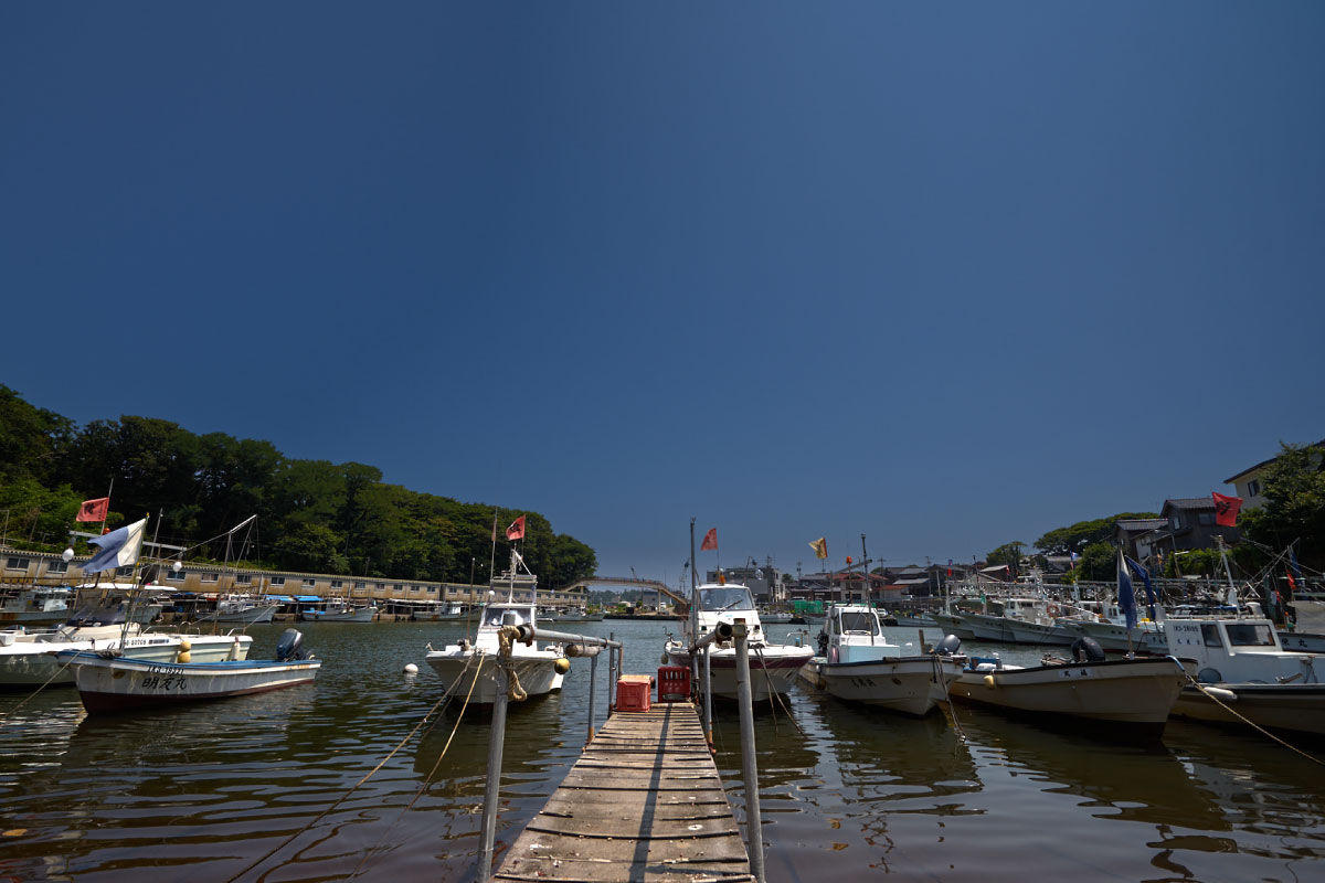 Rows of boats in sheltered harbour